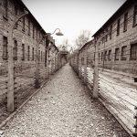 Auschwitz: the Biggest Black Market in Europe