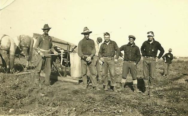 Digging Potatoes 1920s